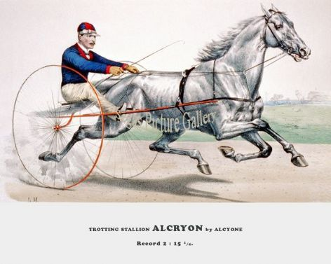 Fine art Horseracing Print of the 1800's Racing and Trotting of Trotting Stallion Alcryon by A